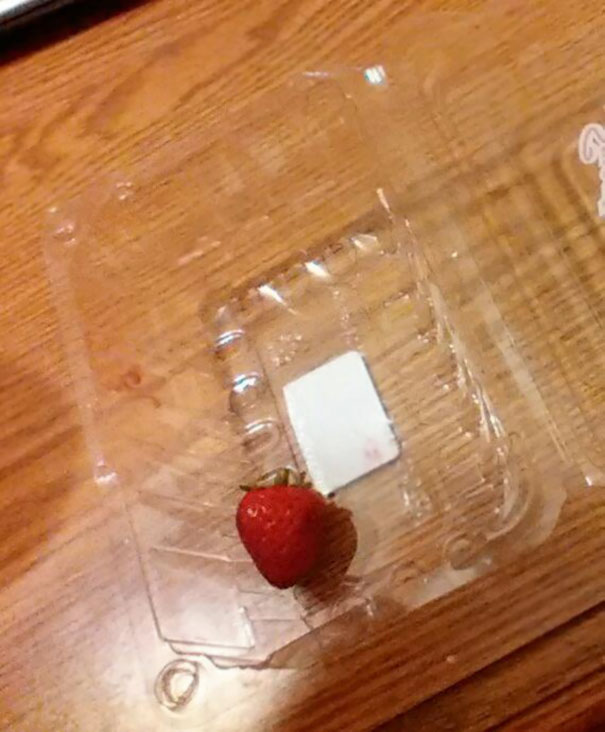sobrou apenas um morango, mas não comeram todos...
