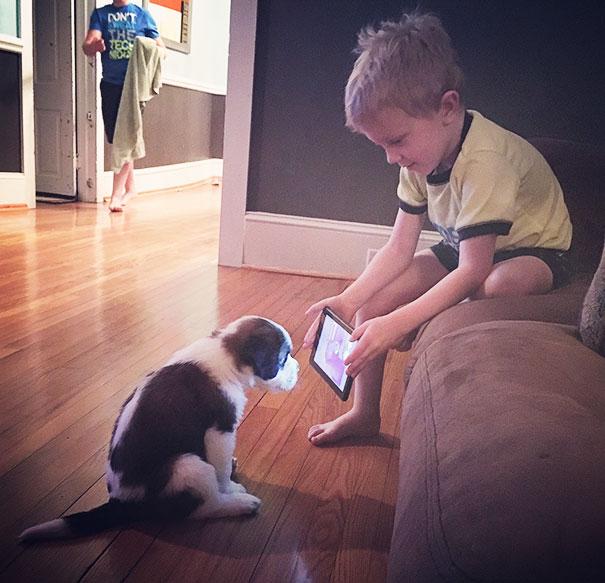 menino mostrando video do youtube para o cachorro usando um tablet